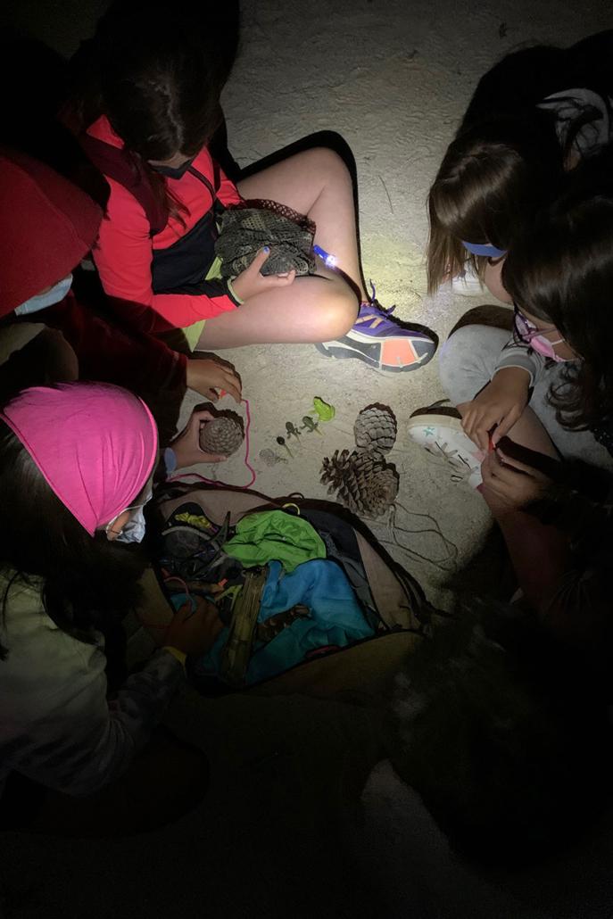 Gymkana nocturna
