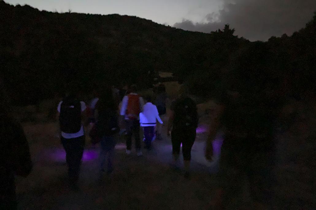 Ruta nocturna