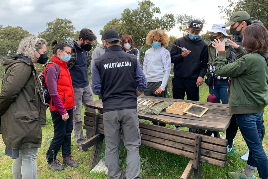 Educar en la naturaleza: formación para adultos